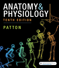 Patton Anatomy & Physiology